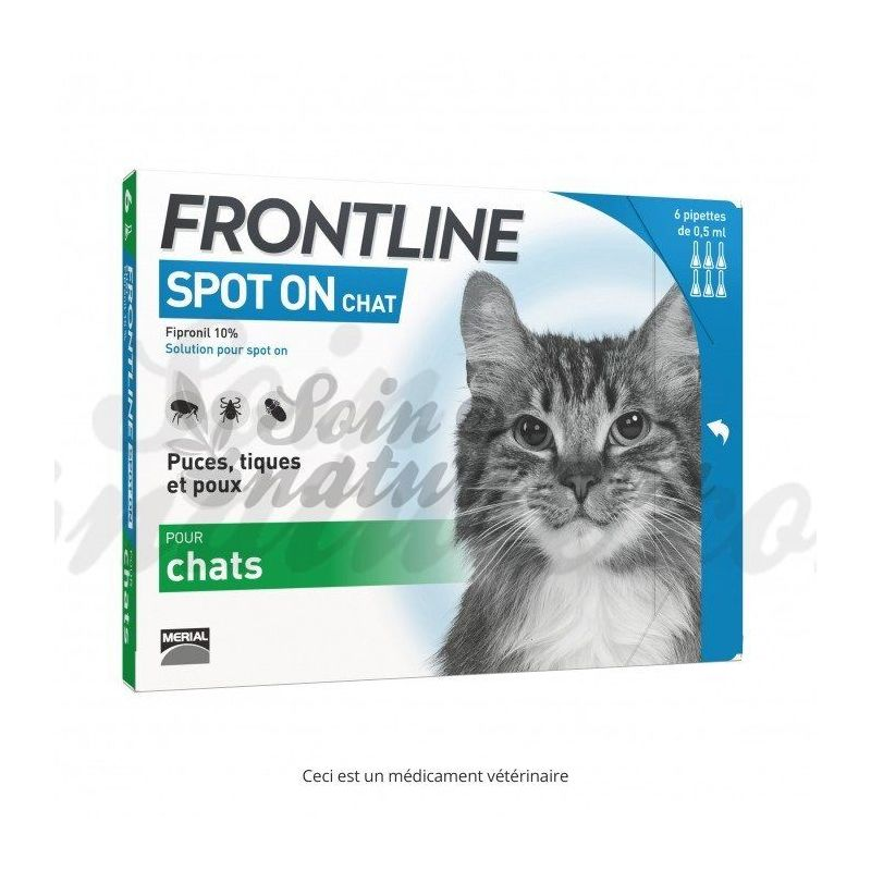 frontline chat