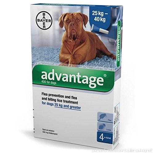 advantage pour chien