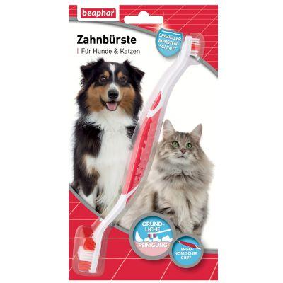 brosse a dent pour chat