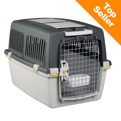 caisse de transport pour chien