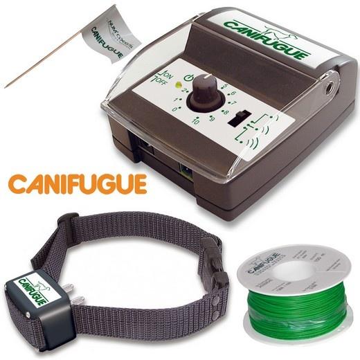 collier electrique pour chien anti fugue