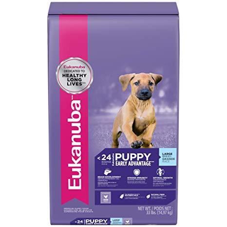 eukanuba puppy