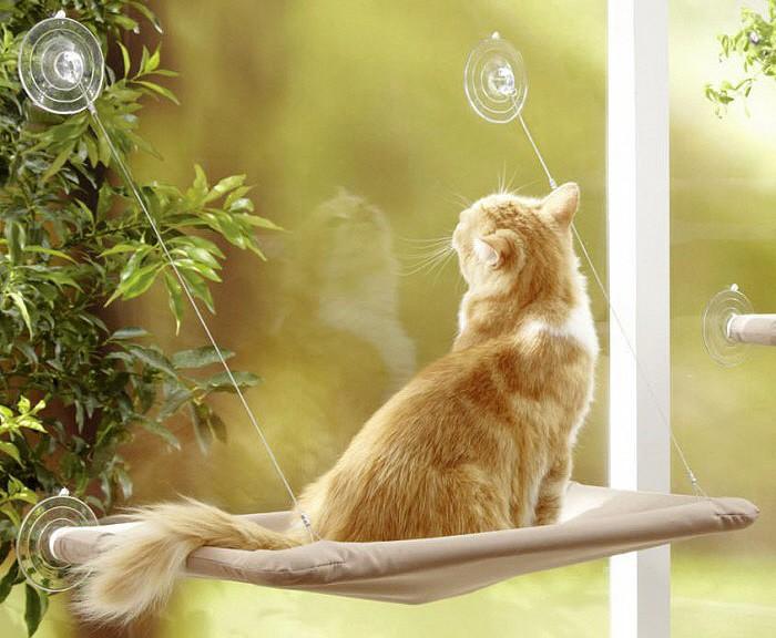 hamac de fenetre pour chat