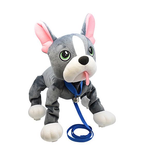jouet chien