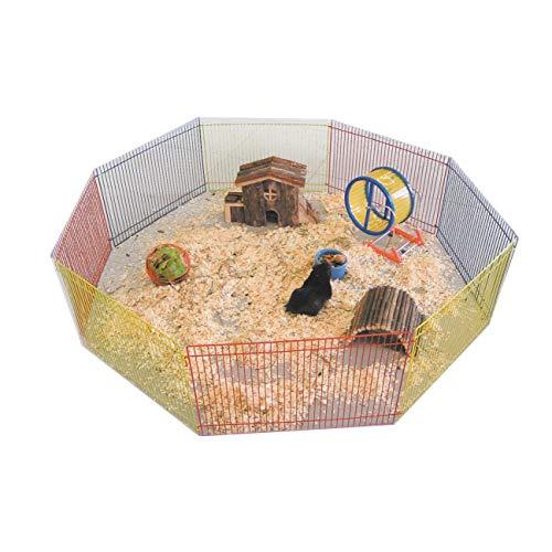 jouet pour cochon d inde