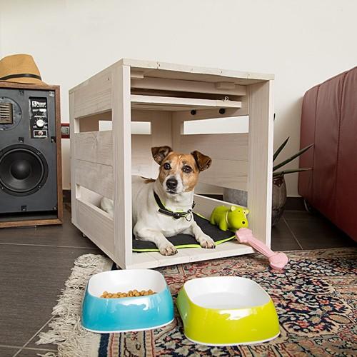 niche chien interieur