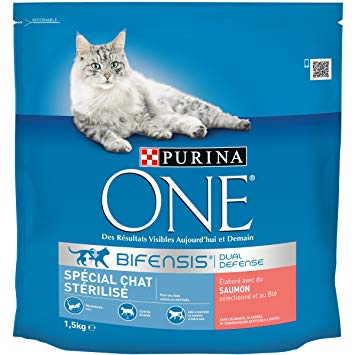 purina one chat