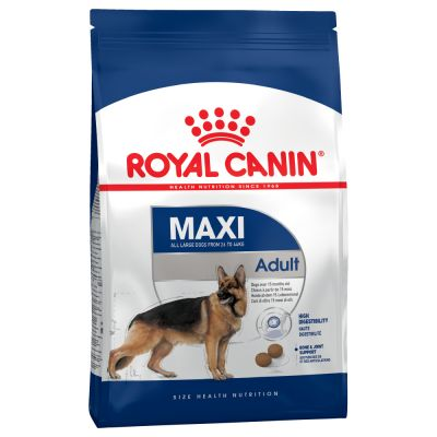 royal canin adulte