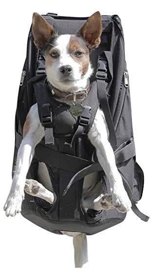 sac a dos pour chien