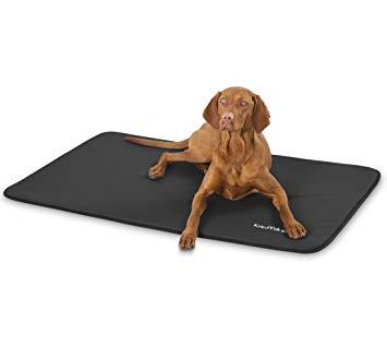 tapis pour grand chien