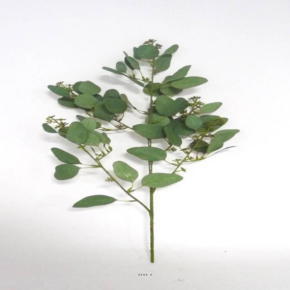 eucalyptus artificiel