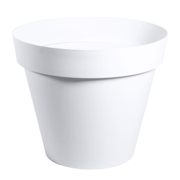 pot blanc